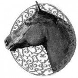 cropped-horse2520head