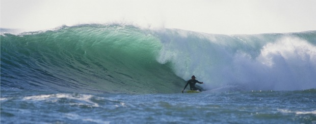 Wayne Lynch in Victoria, Tasmania and South Australia