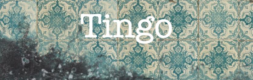 Tingo-944-x-300-Webpage-Banner