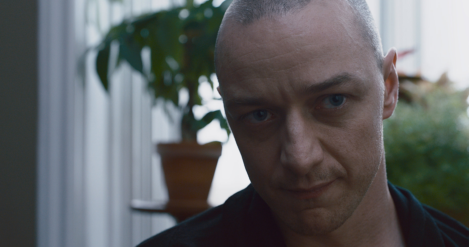 Split – Movie Review – No More Workhorse