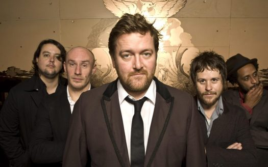 Image result for elbow band