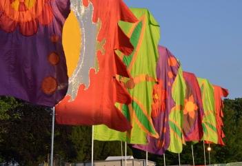 Flags at Forbidden Fruit 2018